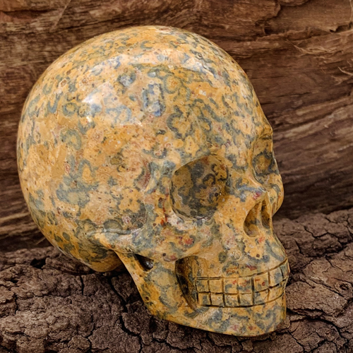 Luipaard Jaspis schedel skull
