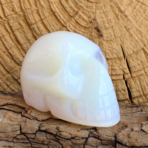 Opaline schedel skull